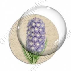 Image digitale - Fleur en grappe