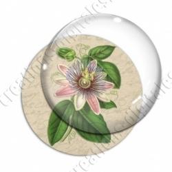 Image digitale - Grosse fleur rose
