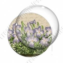 Image digitale - Fleurs violettes