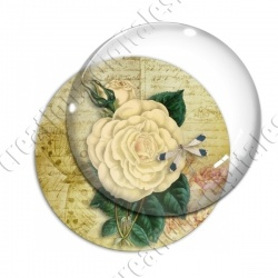 Image digitale - Fleur et libellule fond lettre vintage