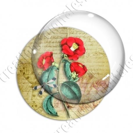 Image digitale - Fleurs rouges et lilbellule fond lettre vintage