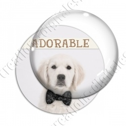 Image digitale - Golden Retriever adorable