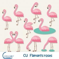 CU Flamants roses