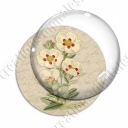 Image digitale - Fleurs