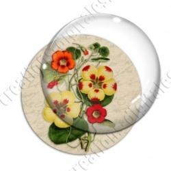 Image digitale - Fleurs bicolores