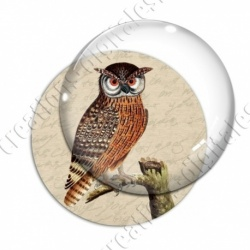 Image digitale - Hibou
