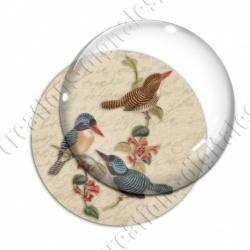 Image digitale - 3 oiseaux