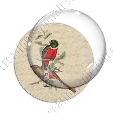 Image digitale - 2 oiseaux