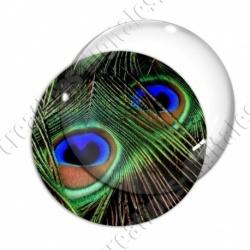 Image digitale - Plume de paon 4