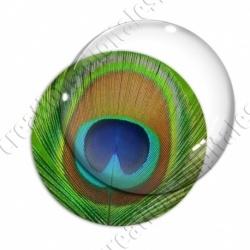 Image digitale - Plume de paon 6