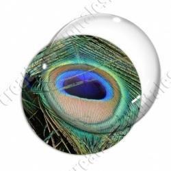 Image digitale - Plume de paon 10