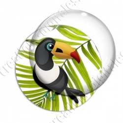 Image digitale - Toucan 02