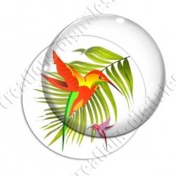 Image digitale - Colibris 02