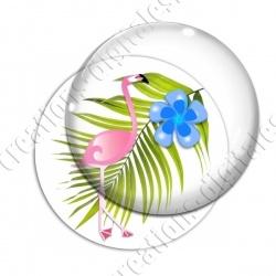 Image digitale - Flamant rose