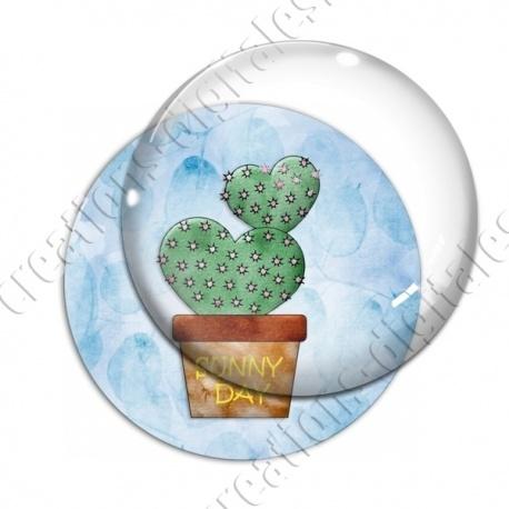 Image digitale - Cactus 05