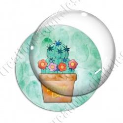 Image digitale - Cactus 07