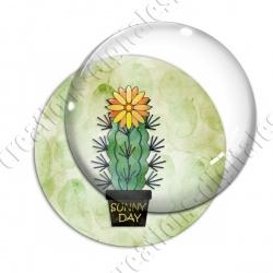 Image digitale - Cactus 08