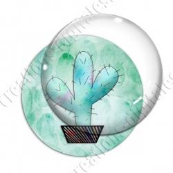Image digitale - Cactus 09