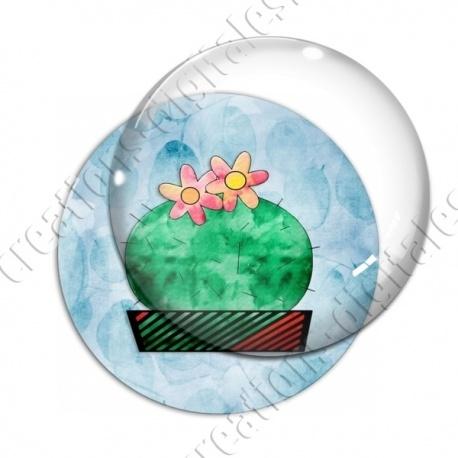 Image digitale - Cactus 10