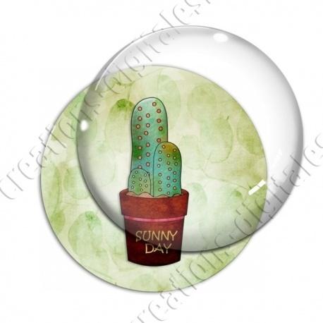 Image digitale - Cactus 12