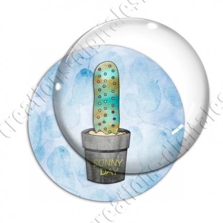 Image digitale - Cactus 13