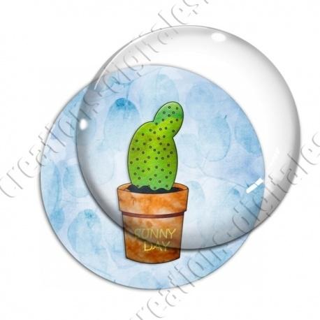Image digitale - Cactus 14