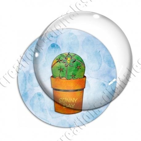 Image digitale - Cactus 15