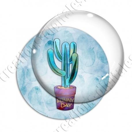 Image digitale - Cactus 16
