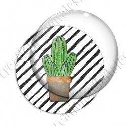 Image digitale - Cactus 33