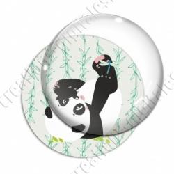 Image digitale - Panda sur le dos fond bambou vert