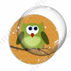Image digitale - Hibou vert sur fond orange