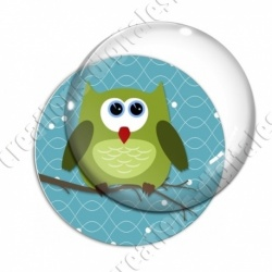 Image digitale - Hibou vert sur fond cyan