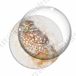 Image digitale - Oiseau - Chouette effet aquarelle