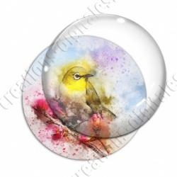Image digitale - Oiseau - Canari effet aquarelle