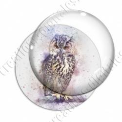 Image digitale - Oiseau - Hibou effet aquarelle