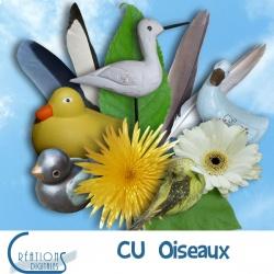 CU Oiseaux